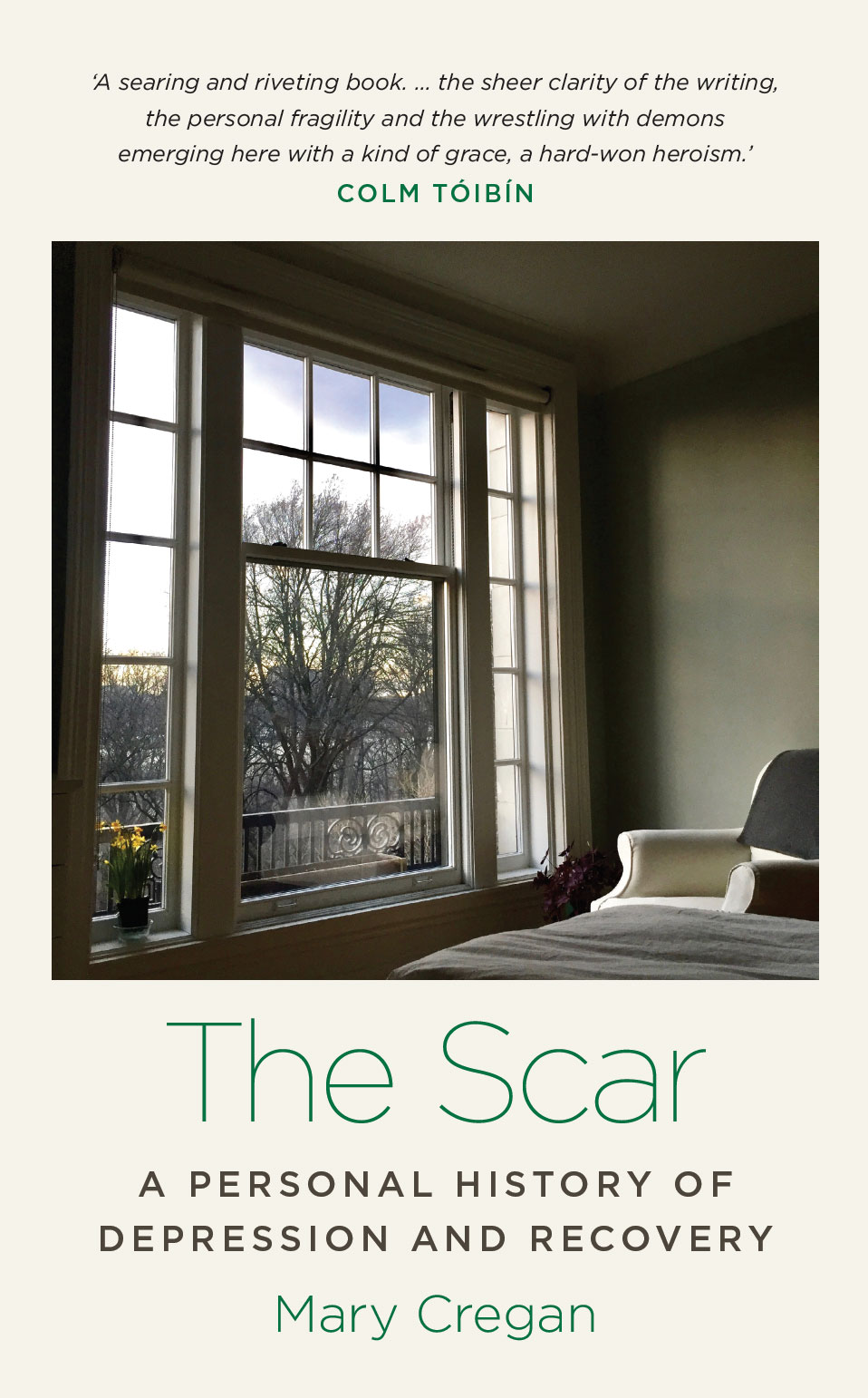 Beautifully designed book cover for The Scar by Mary Cregan